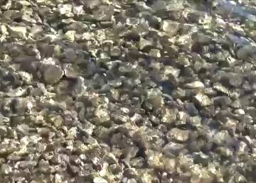 Wasser Qi Gong - Wasser öffnet sich im Himmel